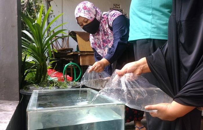 Launching Kampung Tangguh RW 16 Bunulrejo Diwarnai Tebar Benih Lele