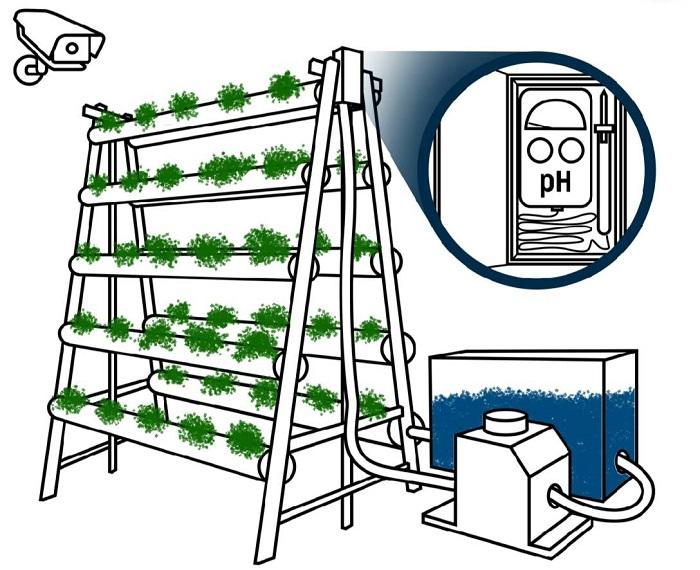 Skema sensor dan detektor dengan AI untuk komunitas kebun hidroponik