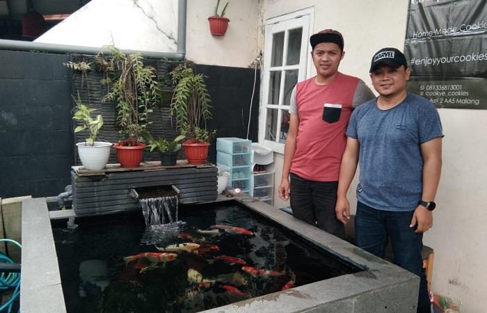 Peluang Menjanjikan Usaha Budidaya Ikan Koi