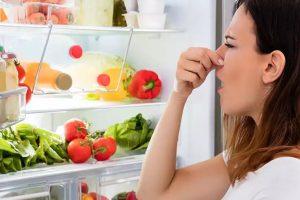 4 Tips Agar Makanan Tak Cepat Rusak di Kulkas
