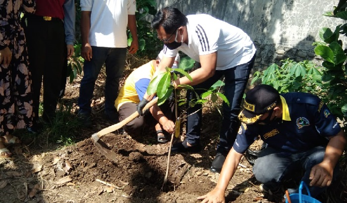 Lestarikan Alam, Wawali Malang Bersama Warga Tanam Pohon Pulai