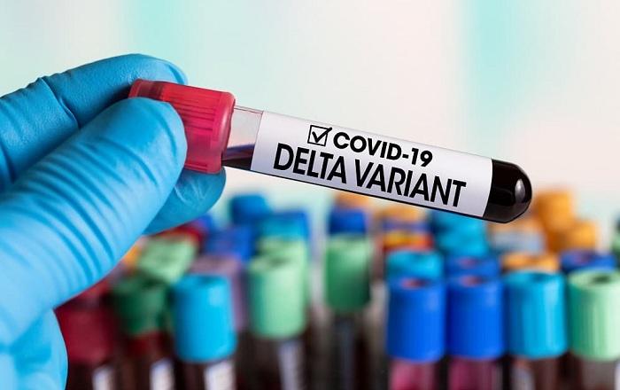 Peningkatan Pasien COVID-19 Varian Delta di AS yang Meninggal, Mayoritas Belum Divaksin