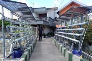 Tim KKN Abmas ITS Rancang Alat Berbasis Energi Surya untuk Kampung Hidroponik Simomulyo Surabaya