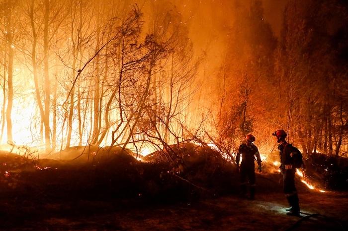 Dahsyatnya kebakaran hutan di Yunani